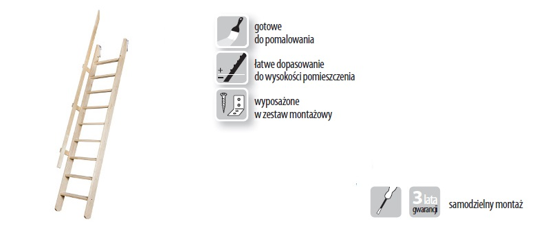 MSP_800.jpg